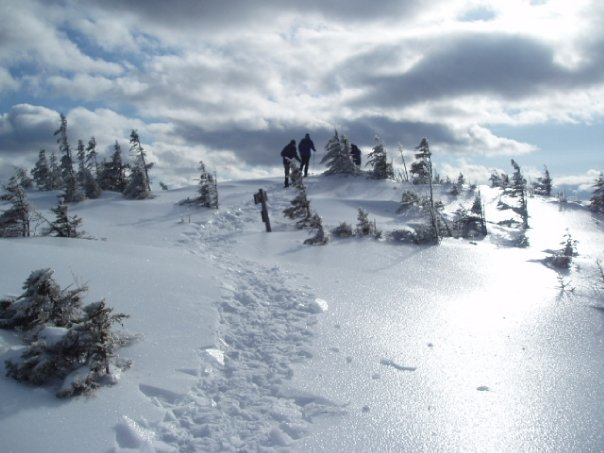 snow-shoeing-maine